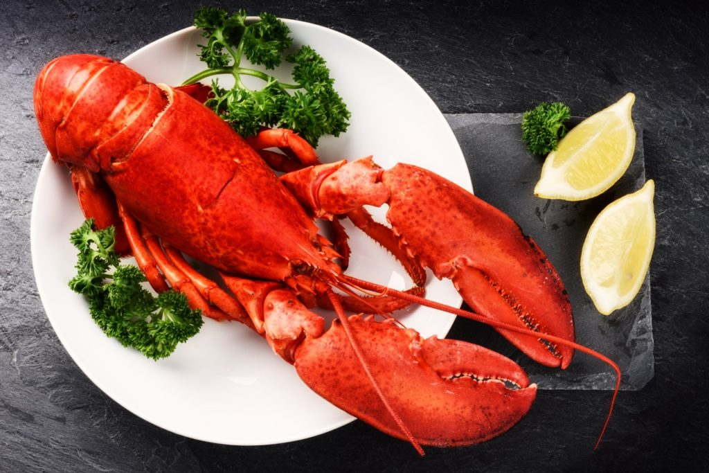 Steamed lobster with lemon on white plate. Sea food background